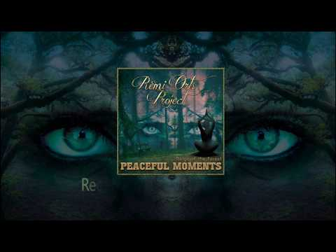 Rémi Orts Project - Peaceful Moments (Reign of the forest)